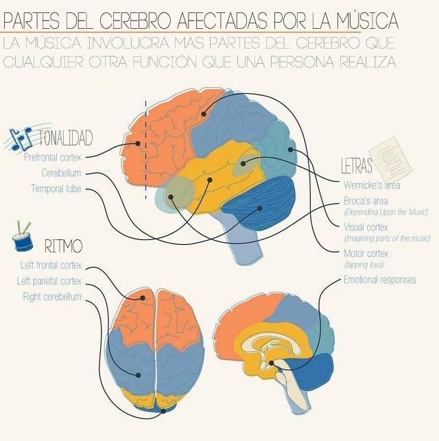 Resultado de imagen de cerebro y música